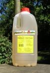 Willerts Knoblauch Salat-Traum - 2 Liter